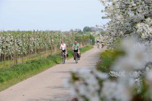 fietsen1-1600