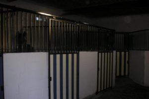paardenhotel(4)-1600